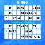 Free Bingo Signup Welcome Offer in Ashford Carbonell 8
